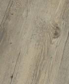 Toscany Pine Gray  DB 00008