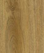 Indian Oak  DEI 55413 AMW