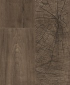 K4383 Dió Fresco Root