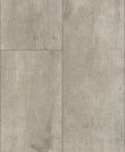 35991 Beton Fossil